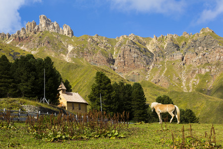 Mountain landscape wiyh horse in the foreground with church and mountains in the background in a sunny  day