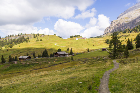 Mountain landscape with path, huts and grazing cows on a sunny day