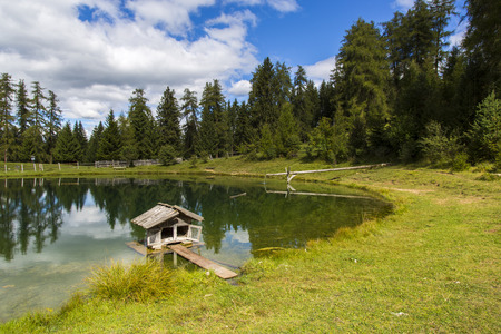 View a small house for ducks in the small lake of Marinzen Alm