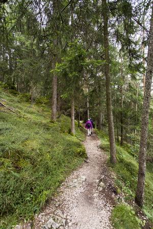 sud tirol: View a path in Seiser Alm with hikers