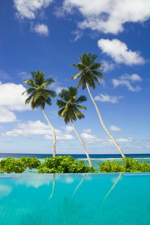 Three coconut palm trees by swimming pool side with beautiful background of blue sky with clouds Stock Photo - 9828199