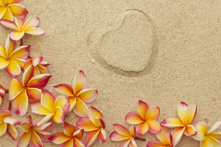 Group of frangipani, plumeria flowers and a shape of heart, on sand
