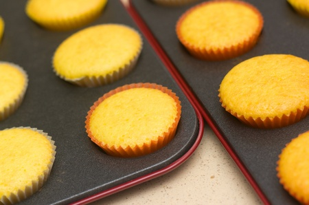 backing: Freshly backed cupcakes on a backing tray. Shallow depth of field.