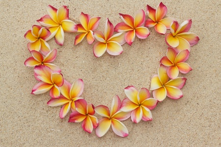 Group of frangipani, plumeria flowers in shape of heart, on sand