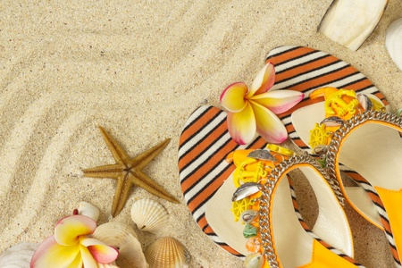 Sandals, seashells, starfish and frangipani on sand  Stock Photo - 13680028