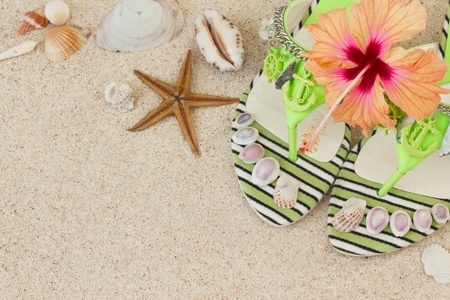 Sandals, seashells, and hibiscus flower on sand Stock Photo - 14128734