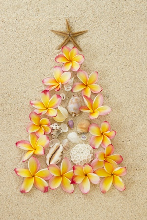 Christmas tree made of frangipani and shelles on sand  Xmas beach holiday concept