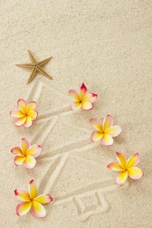 砂とフランジパニの花クリスマス ビーチ ホリデイ ・ コンセプトで作ったクリスマス ツリー