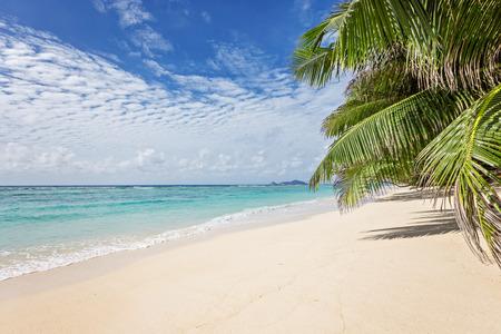 Dreamy sandy beach photo