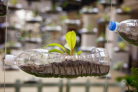 bottiglie di plastica vuote utilizzare come contenitore per la coltivazione di piante, riciclare concetto verde, composizione orizzontale