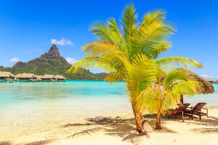 borabora: View of the Otemanu mountain with palm tree and stunning lagoon, Bora-Bora, Tahiti, French Polynesia