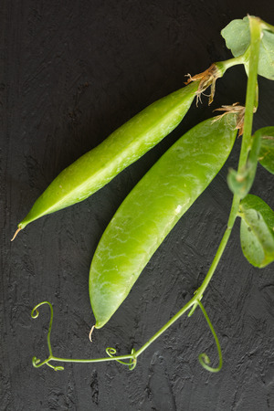 Pods of green peas with leaves on dark background.