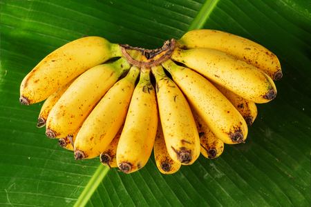 Bunch of fresh bananas on banana leaves, top view 写真素材