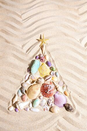Christmas tree  made from shells and corals on beach sand, flat lay , vertical composition Standard-Bild - 130132062
