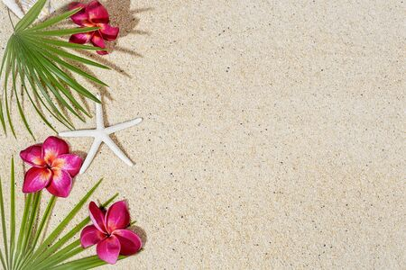 Red frangipani flowers and green palm leafs with starfish on sand background, top view, copy space