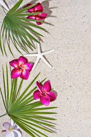 Red frangipani flowers and green palm leafs with starfish on sand background, top view, copy space., vertical composition