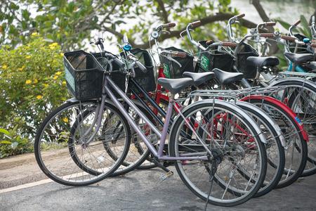 rentals: Row of Bicycle rentals