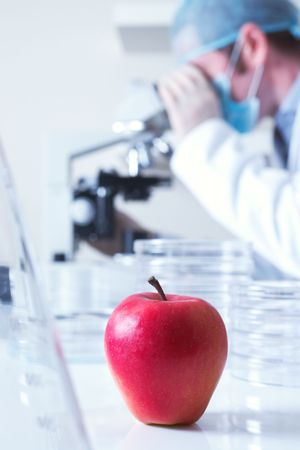 Genetically modified red apple and scientist selective focus  photo