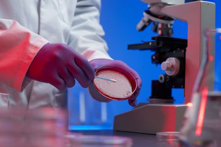 Scientist conducting genetic research of blood sample in laboratory selective focus Stock Photo