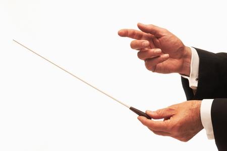 orquesta: Manos de director de orquesta de m�sica con bast�n aislados en fondo blanco