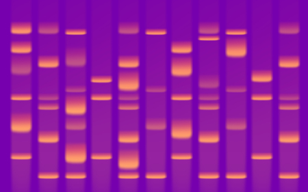 DNA Sequence Gel Close Up Stock Photo