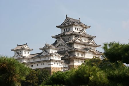 Himeji castle amongst the ever green pine trees in japan