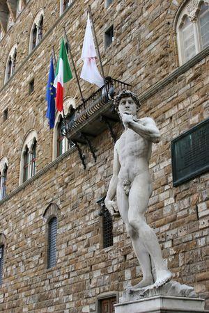 pene: la estatua de m�rmol Rey David de Miguel �ngel en Florencia, Italia