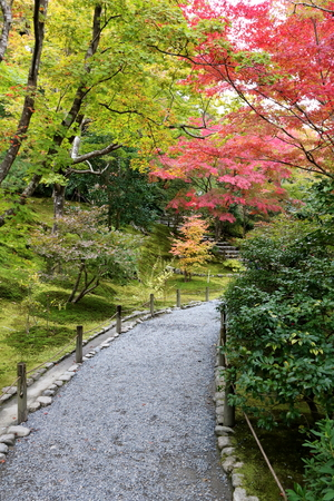 Autumn foliage in Japans ancient capital Kyoto