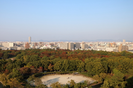 Aerial view of Nagoya City in Aichi Prefecture in Japan at dusk during the golden hour with Autumn foliage visible in the foreground Stock Photo