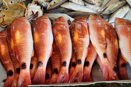 Red snapper and other seafood available for sale at Nuwara Eliya market, Sri Lanka