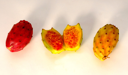 prickly pear: prickly pear Stock Photo