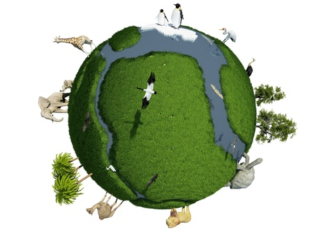 large turtle: Globe with animals on a white background. Stock Photo