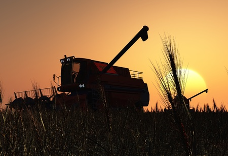 cosechadora: Máquinas para la cosecha en un fondo azul cielo