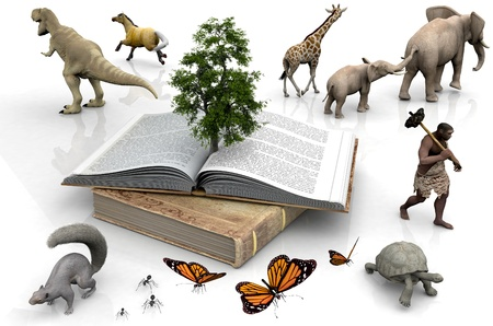 The book and the animals on a white background. photo