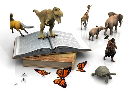 student travel: The book and the animals on a white background.
