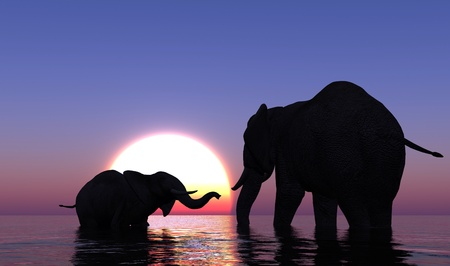 indian summer: Elephants bathing in the sea at sunset. Stock Photo