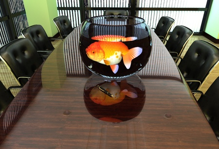 conference room table: Aquarium with fish on an office desk.