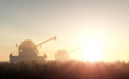 fall harvest: Machines for harvesting  in from the sun. Stock Photo