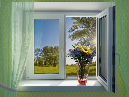 Flowers on the window of a house. photo
