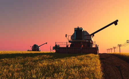 Machines for harvesting on a background blue sky Banque d'images
