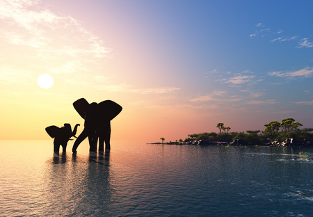 hot couple: An elephant swims through the water.