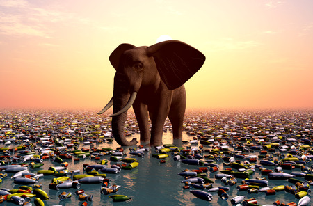 amongst: The elephant stands amongst debris.