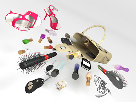accessory: Accessories from the womens handbags.