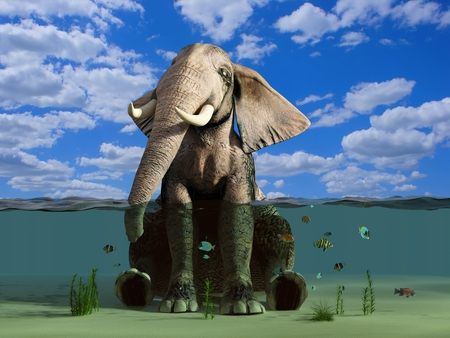 natural forces: The elephant is sitting in the water.