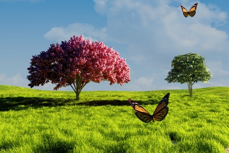 green butterfly: Butterflies on the background of green field. Stock Photo