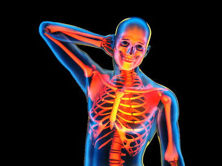 Graphical representation of the human skeleton.,3d render