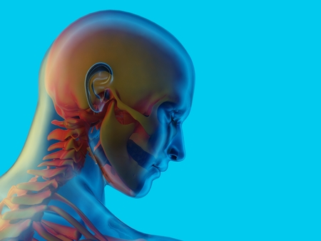 A human skull on a blue background..,3d render