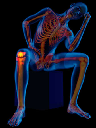 Graphical representation of the human skeleton., 3d render