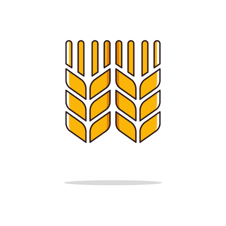 Wheat color thin line icon on white background. Linear symbols. Illustration