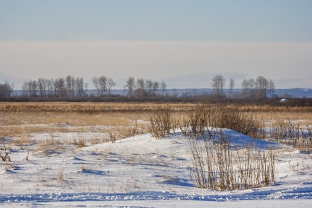 covered fields: The snowdrift in the field near the Russian village. Snow covered fields.